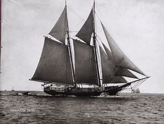 galway hooker(0.0), watercraft rowing(0.0), longship(0.0), full-rigged ship(0.0), carrack(0.0), barquentine(0.0), manila galleon(0.0), sloop-of-war(0.0), caravel(0.0), scow(0.0), barque(0.0), ship of the line(1.0), sail(1.0), sailboat(1.0), sailing ship(1.0), schooner(1.0), vehicle(1.0), ship(1.0), windjammer(1.0), thames sailing barge(1.0), fluyt(1.0), mast(1.0), lugger(1.0), galeas(1.0), tall ship(1.0), watercraft(1.0), black-and-white(1.0), boat(1.0), brig(1.0), brigantine(1.0),