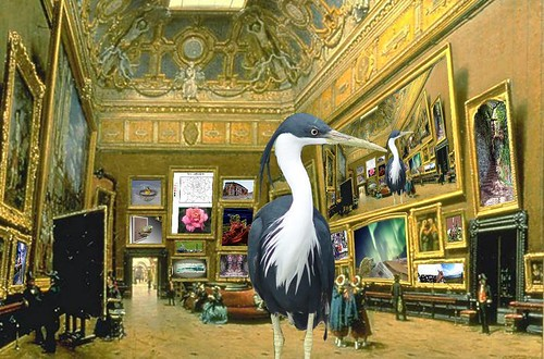 Heron at the Louvre