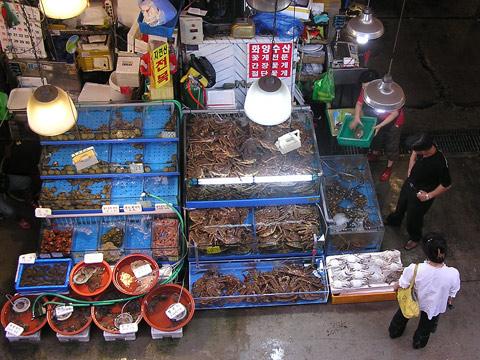 Noryangjin fish market seoul the last appetite for Closest fish market