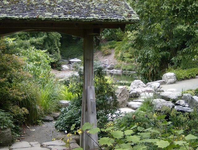 Japanese pool area u c botanical garden flickr photo for Japanese garden pool