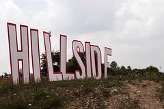 Hillside 2007