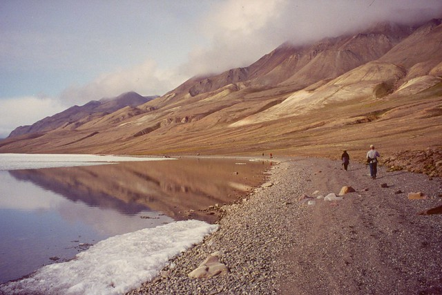 Hiking the Shore of Lake Hazen, Ellesmere Island 19990715