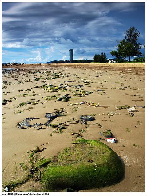 Sampah sebagai elemen fotografi lanskap