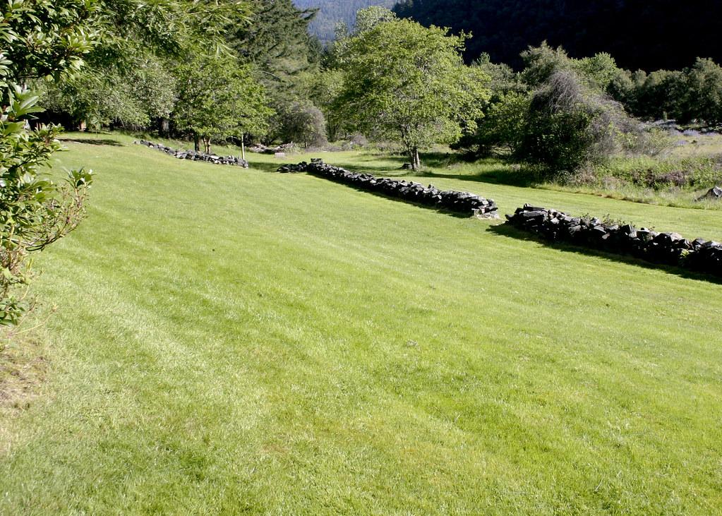 The lawn at Black Bar
