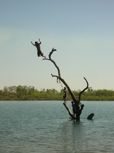 The Swim Beach Tree Action -Lake Kununurra