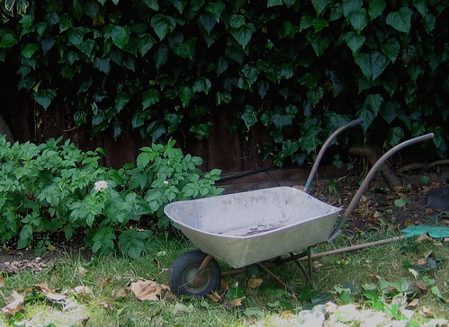 Found Wheelbarrow