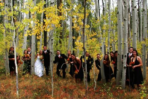 wedding me eric montana jake jennifer brian patrick steph tyler rian mikel gregg mcgraw marah bridgid poff suedy ©tylerknottgregson thedonovans