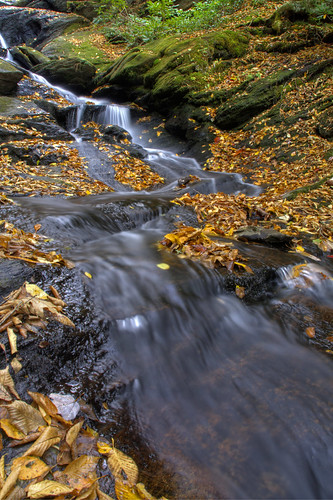 longexposure autumn water leaves creek flow waterfall nc moss movement rocks stream northcarolina hdr ncmountains yanceycounty ncwaterfalls roaringforkfalls davidhopkinsphotography photocontestfall10 ncpedia