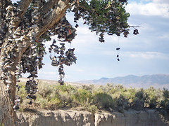 the tree of shoes on the loneliest road in america