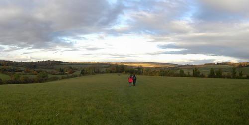 Panorama: Autumn sky and trees