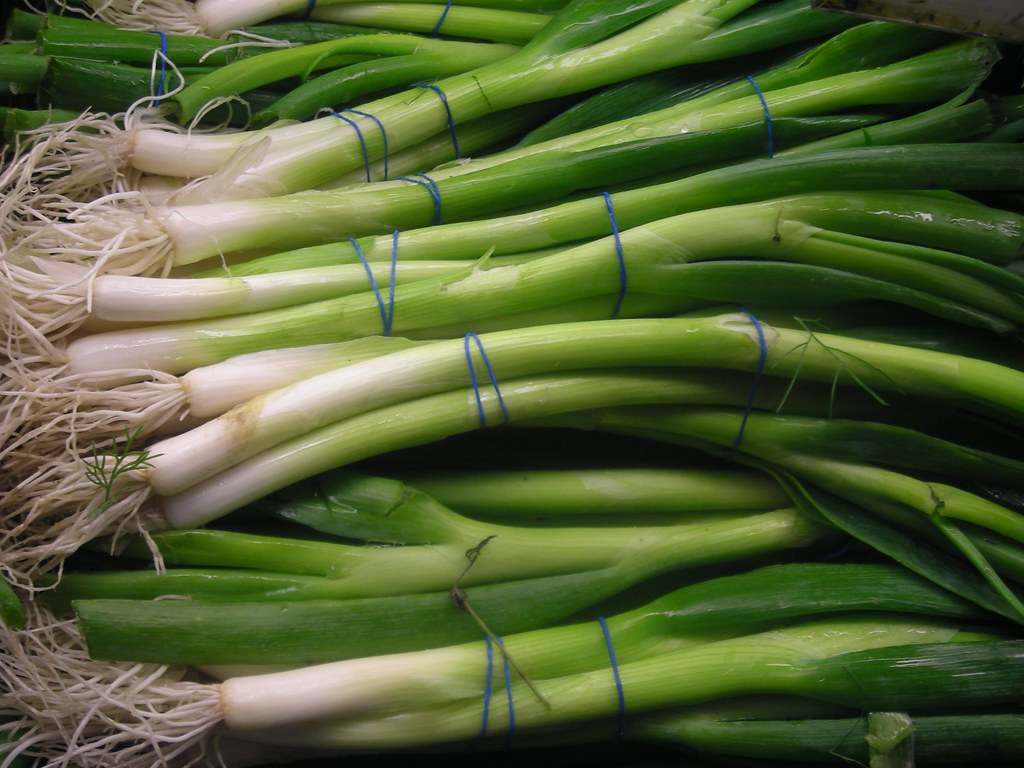scallions spring onion, green onion, includes tops and bulb, raw