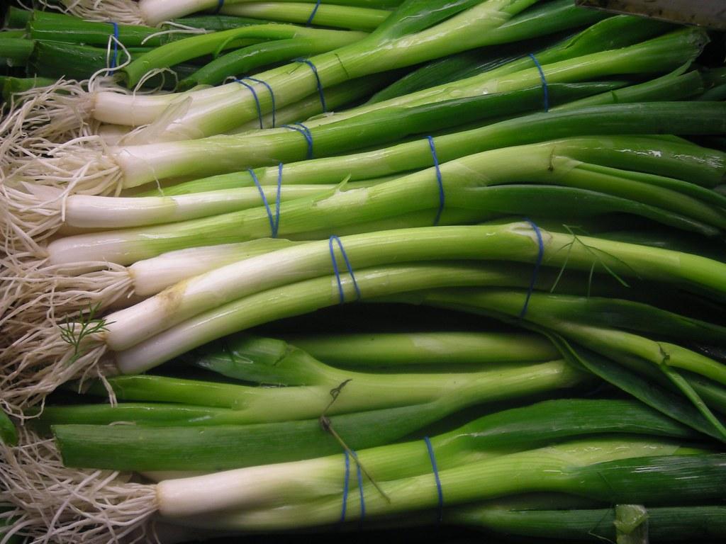 فوائد اكل البصل الأخضر