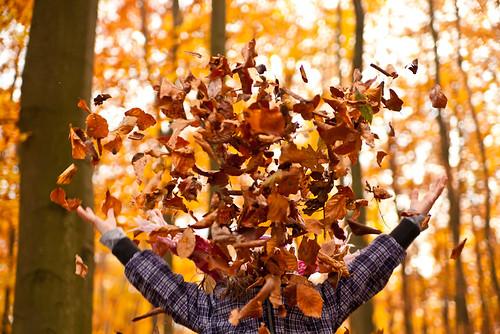 Herbst macht Spaß