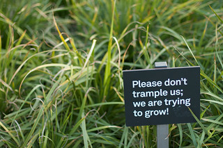 Please don't trample us