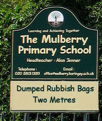 Mulberry primary school