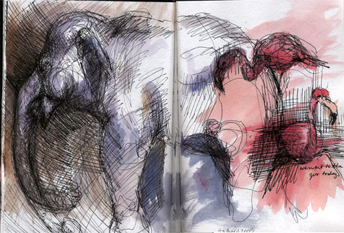 Sketchbook: Elephant, Flamingo