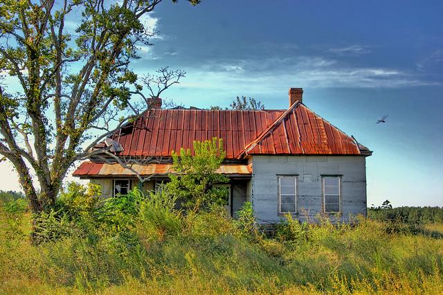 Dragonfly   Rosa Parks' childhood home. Abbeville, AL I ...