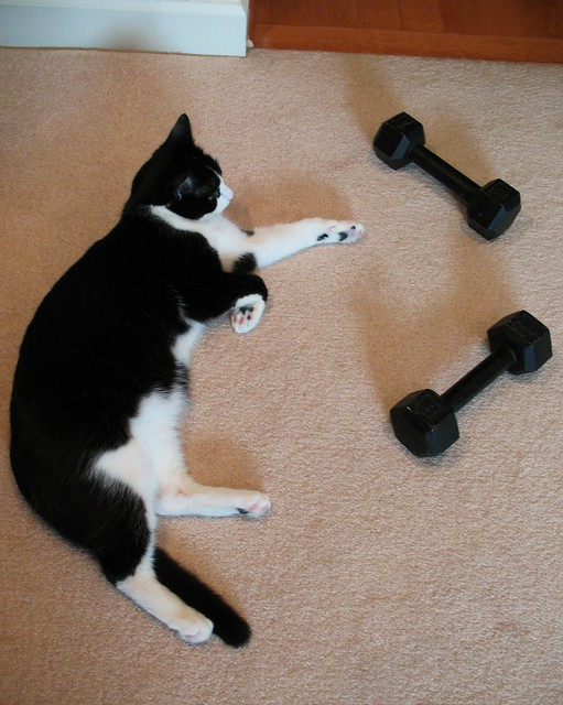 Oliver After Weight Training