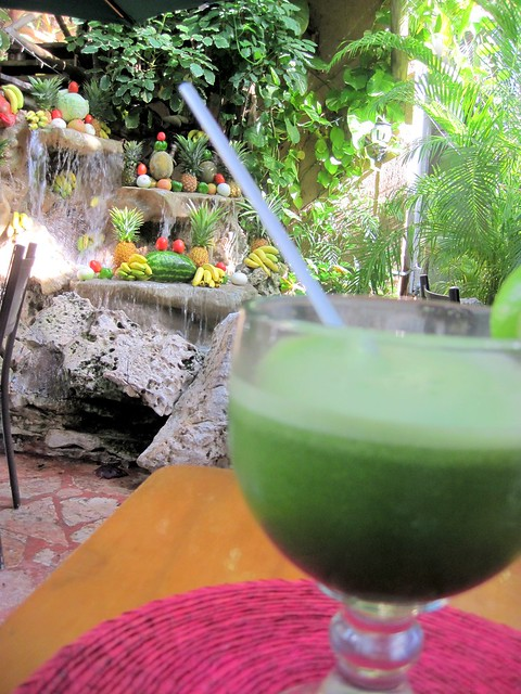 Tropical Green Juice | Flickr - Photo Sharing!