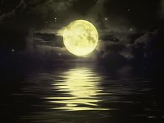 moonstruck- back or texture