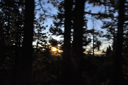 california ca trees sunset ski bus sunrise bay am jackson area powpow backofthebus eyefi bayareaskibus backodabus