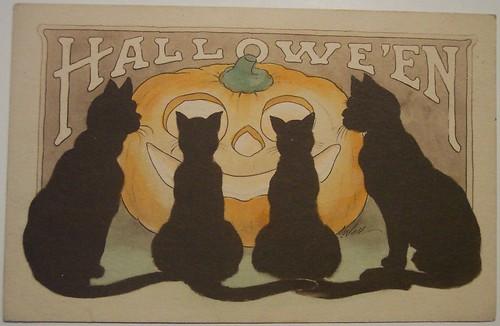 Vintage Halloween Postcard     Gibson