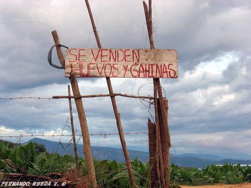 Aviso 1 by FernandoRueda