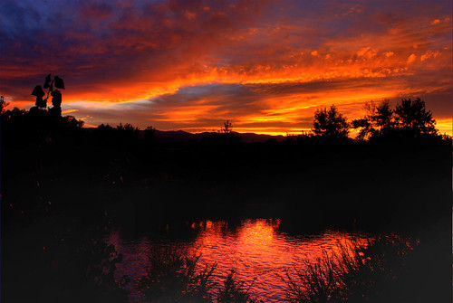 trees sunset sky orange sunlight color reflection water silhouette clouds river skyscape colorado colorful denver littleton southplatteriver anawesomeshot 200709 diamondclassphotographer