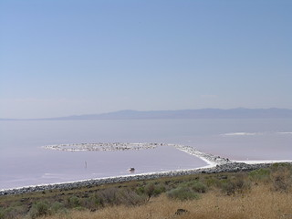 Spiral Jetty swirls in the water