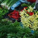 Chilies, Cilantro, Cumin at Market - Tashkent, Uzbekistan