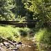 Patapsco Valley State Park Stream