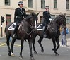 Glasgow Mounted Police
