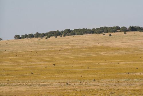 usa field colorado ludlow northamerica