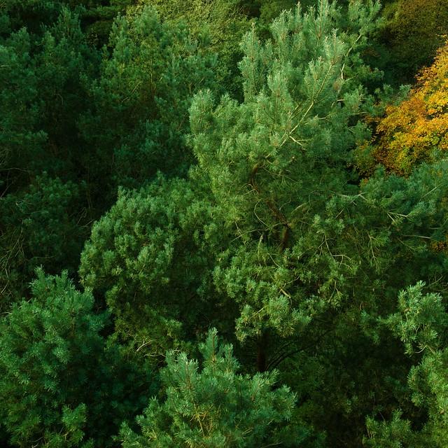 Collection galleries world map app garden camera finder flickr blog