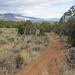 JQS Trails by ColoradoFotog