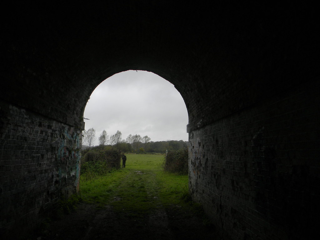 through a tunnel Ashurst short circular