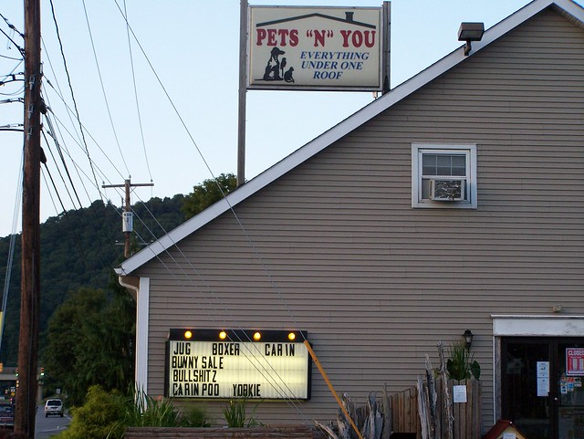 Pet Storesthat Sell Dogs In Fort Wayne Indiana
