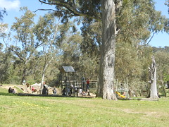 The glorifying landscape of Belair National Park - Things to do in Adelaide