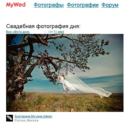 Photo of the day - Mywed.ru