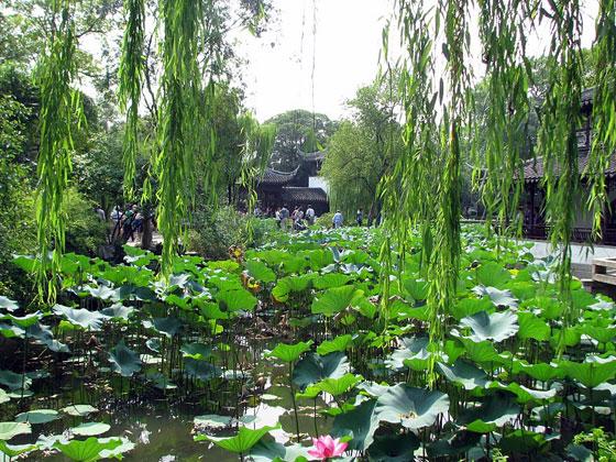 גן מסורתי בסוצ'ו, צילום: אדריכלית רוני העליון