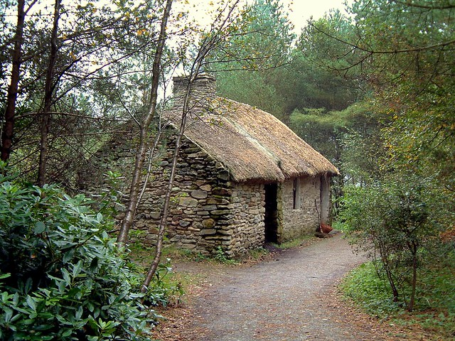 The Cottage In Woods