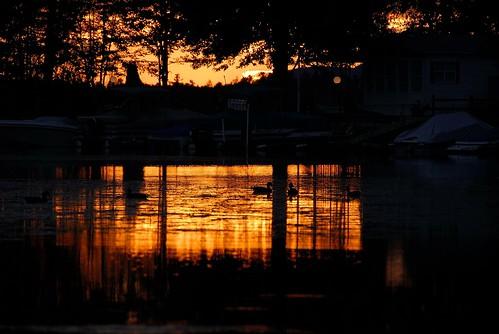 sunset lake water scenery maine ducks sebagolake nikkorafsdxvr18200mmf3556gifed