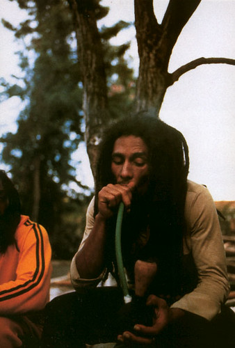 Bunny Wailer Roots Radics Rockers And Reggae