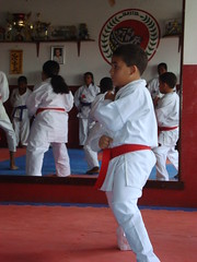 striking combat sports(1.0), hapkido(1.0), individual sports(1.0), contact sport(1.0), taekwondo(1.0), sports(1.0), tang soo do(1.0), combat sport(1.0), martial arts(1.0), karate(1.0), taekkyeon(1.0), black belt(1.0), japanese martial arts(1.0),