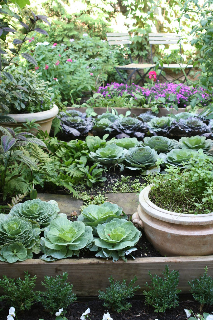 Edible Gardens: Kitchen garden at Bolen residence. University of Florida Gardening Solutions