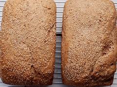 wheat(0.0), sliced bread(0.0), baking(1.0), rye(1.0), bread(1.0), rye bread(1.0), whole grain(1.0), baked goods(1.0), produce(1.0), food(1.0), brown bread(1.0), sourdough(1.0),