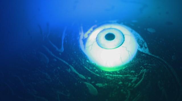 Blue Eye Soup