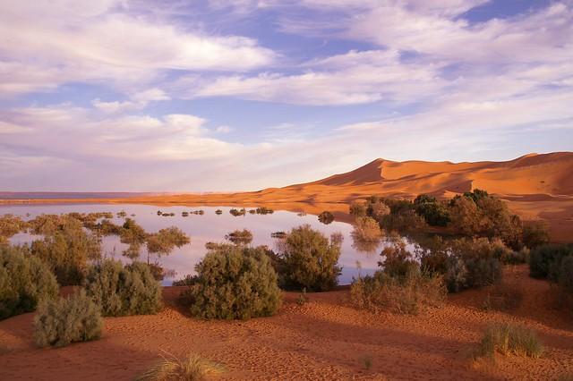 Merzouga - Ergg Chebbi lake