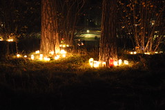 Skogskyrkogården on All Saints' Day 2010