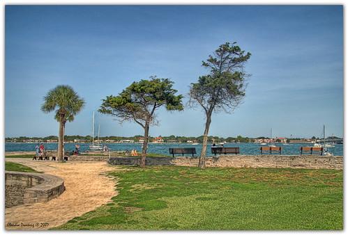 blue trees green florida staugustine hdr canoneosdigitalrebelxt castillodesanmarcos photomatix canonefs1785mmf456isusm 3exp